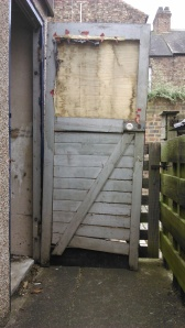 The old shed door to replace