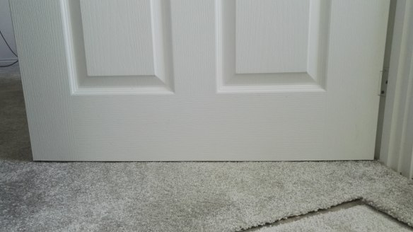 Door trimming and hanging